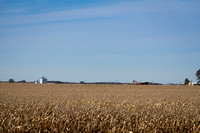 NL_Corn_Harvest_2019_c_13