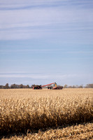 NL_Corn_Harvest_2019_c_133